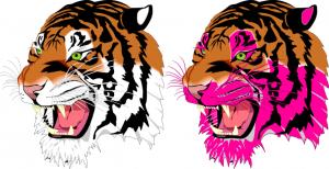 Der Tiger einmal vorher und nachher